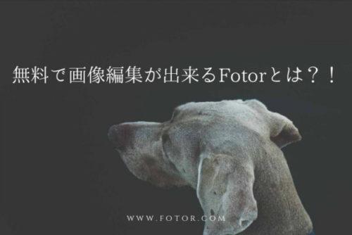 fotorで作成したブログ画像